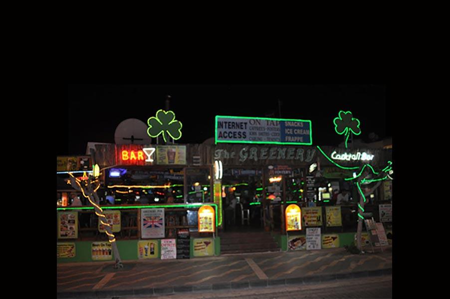 Greenery Karaoke Bar